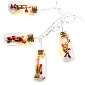 10 Led (5mm) Θερμά Λαμπάκια Glass Bottle Red Berry (XI10WW2A)